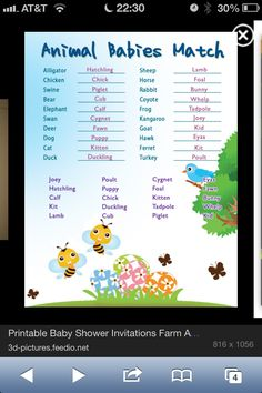 Animal baby shower game for the vet aspect although using proper names(: Shower Bebe, Baby Shower Fall, Baby Boy Shower, Diaper Shower, Shower Party, Baby Shower Parties, Shower Gifts, Baby Showers, Baby Party