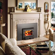 Wood Fireplace Inserts - Fireplace Xtrordinair 33 Elite Plus ...