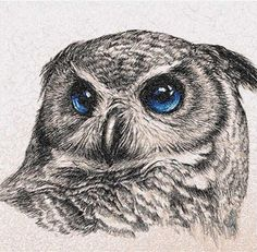 Owl photo stitch free embroidery design 24 - Photo stitch embroidery designs - Machine embroidery community