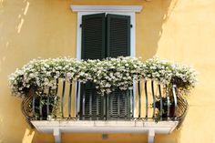 Balconi Piccolissimi : 11 fantastiche immagini su finestre balconi e porte. balcony