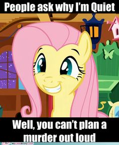 Shhh, Fluttershy, we don't want people to know what we are planning.