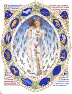 Medical - Anatomy - Astronomy - Astronomy man, French Medieval