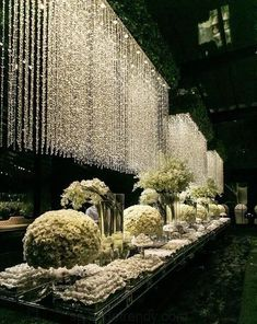 Absolute dreamy wedding decor😍😍 Double tap if you love those waterfall lights✨ Wedding Stage, Wedding Goals, Wedding Themes, Wedding Designs, Wedding Venues, Wedding Decorations, Wedding Ideas, Wedding Reception, Luxury Wedding