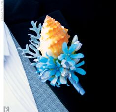 Shell boutonniere with dusty miller to look like coral and little blue flowers. Beach wedding.