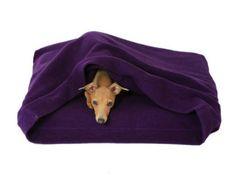Sleep In Dog Bed- Organic Cotton Dog Bed, Washable Purple Fleece