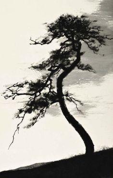 Pine, Moon Byung Sun
