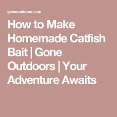 How to Make Homemade Catfish Bait | Gone Outdoors | Your Adventure Awaits