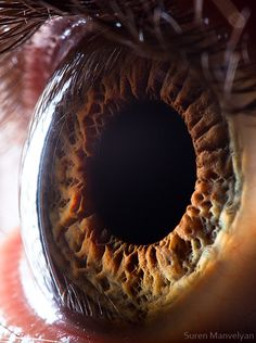 """""""Your Beautiful Eyes"""" by Armenian photographer Suren Manvelyan is a macro photography series of human eyes. The photos are such extreme close-ups that the eyes take on an almost otherworldly qualit..."""