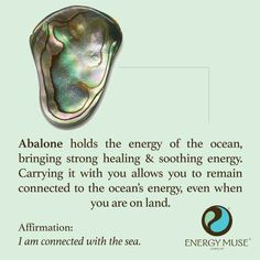 Abalone - holds the energy of the ocean