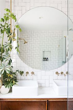 """These """"Bathroom Plants"""" Will Make Every Shower Feel Like a Mini Tropical Getaway via @MyDomaineAU"""