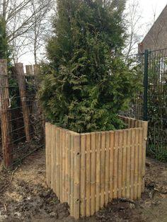 Bamboe plantenbak
