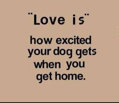 """""""Love is . . . """""""