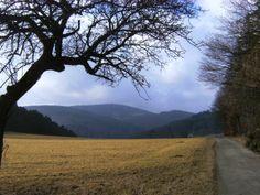 Über den Nesselberg bei Merzhausen (Taunus) | GPS-Wanderatlas Deutschland