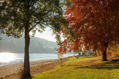 Am Ufer des Diemelsees findet man die schönsten Herbstfarben