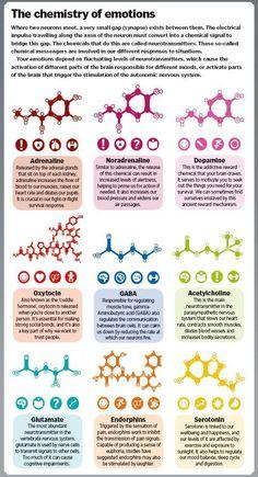 #emotionalintelligence #emotions #chemistryofemotions #erinfado #youwillbearwitness #fightingforafuture