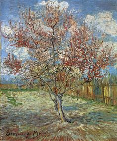"Vincent van Gogh ""Pink Peach Trees ('Souvenir de Mauve')""/  March 1888, Arles/  Oil on canvas, 73 x 60 cm/"