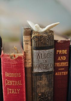 (Books give) soul to the universe, wings to the mind, flight to the imagination... ~ Plato