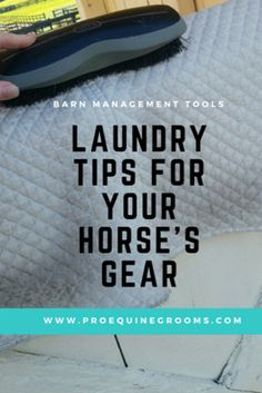 Pro Equine Grooms - Laundry Tips - Get all of your horse gear sparkling!