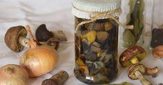 Včera jsme byli na návštěvě na Slovensku v Trenčíně.   Padla řeč na růst hub a toho, kolik jich u nich v lese roste. A jelo se!   Já v šate... Pickles, Cucumber, Stuffed Mushrooms, Canning, Vegetables, Hub, Food, Stuff Mushrooms, Essen
