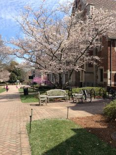 It's always a beautiful day at Agnes Scott College