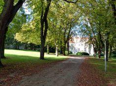 Wunderbarer Herbst in Mecklenburg Vorpommern | Bilder, Aquarelle vom Meer & mehr - von Frank Koebsch