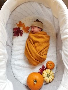 Fall baby boy picture - Adriana Schad-#Adriana #baby #Boy #Fall #picture #Schad