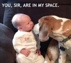 #funnybabies #funnycaption #funny #hilarious #humor #lol #lmao