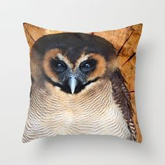 Asian wood Owl Throw Pillow by F Photography and Digital Art - $20.00