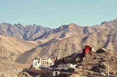 Spituk Gompa things to do in leh ladakh