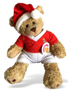 27d3c46d1458 Teddy Bear Clothes, fit Build a Bear, Red Football Christmas Outfit & Santa  Hat