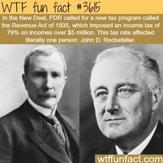 Wtf Fun Facts, Funny Facts, Random Facts, Odd Facts, Strange Facts, Crazy Facts, Did You Know Facts, Things To Know, Interesting History