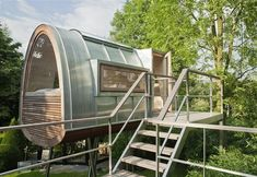 """King of the Frogs by Baumraum 