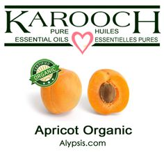 Apricot kernel is a very popular oil for massage. It's great to use on it's own but even better when used as a base oil for blending with essential oils. Apricot Fruit, Apricot Oil, Diluting Essential Oils, Apricot Kernels, Parts Of A Plant, Beta Carotene, Prunus