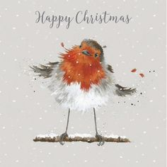 - Christmas Robin Luxury Boxed Christmas Cards - Gifts and Costume Ideas for 2020 , Christmas Celebration Painted Christmas Cards, Boxed Christmas Cards, Watercolor Christmas Cards, Christmas Card Crafts, Christmas Bird, Blue Christmas Decor, Watercolor Cards, Christmas Colors, Xmas Cards