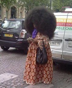 I think there must be a person under that huge afro...