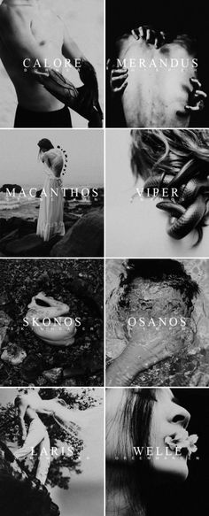 ↳ red queen silver houses, part one