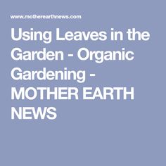 Using Leaves in the Garden - Organic Gardening - MOTHER EARTH NEWS