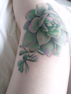 tattoo succulent