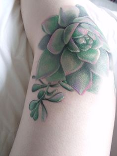 tattoo succulent #ink #tattoo