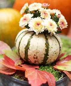 vignette design: Fall Centerpiece Ideas: Smashing Pumpkins by ora Pumpkin Vase, Pumpkin Flower, Mini Pumpkins, White Pumpkins, Fall Pumpkins, Pumpkin Carving, Carving Pumpkins, Autumn Decorating, Pumpkin Decorating
