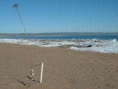 David Bowen kinetic, robotic, interactive and data driven sculpture Pixel, Wilderness, Presents, David, Sculpture, Digital, Beach, Water, Outdoor