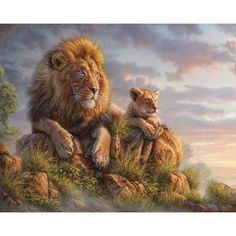Wildlife Lion Wall Decal - Lion Pride by Phil Jaeger