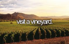Visit a vineyard.