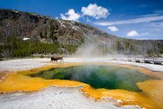 #Etats-Unis, Parc National de Yellowstone