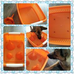 ideas diy dog games enrichment activities for 2019 Brain Games For Dogs, Dog Games, Animal Games, Diy Dog Toys, Best Dog Toys, Pet Toys, Dog Enrichment, Enrichment Activities, Dog Boredom
