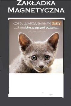 Zakładka do książki Kot Dusza