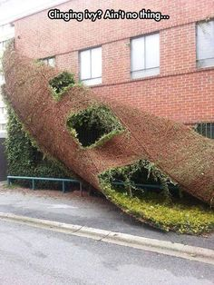 Funny pictures about A building shedding like a snake. Oh, and cool pics about A building shedding like a snake. Also, A building shedding like a snake.