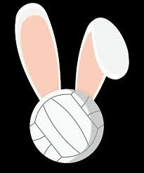 Image result for volleyball easter Team Snacks, Volleyball Ideas, Cricut Design, Easter, Image, Easter Activities