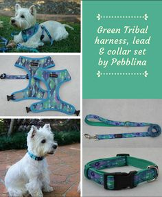 Cute matching dog harness, lead and collar set by Pebblina. Featuring a tribal pattern. Your pooch is sure to stand out in style from the rest with this matching set Dog Facts, Online Pet Supplies, Matching Set, Dog Harness, Best Dogs, Rest, Cute, Pattern, Style