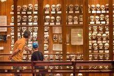 mutter museum philadelphi